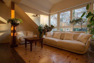 timber floor installers